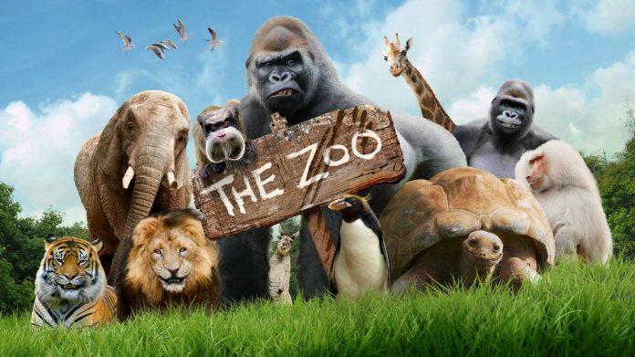 zoo china dikecam