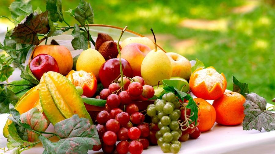 FAKTA : Jenis Buah-buahan Berkhasiat Yang Perlu Anda Ketahui